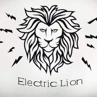 Бригада Electric Lion